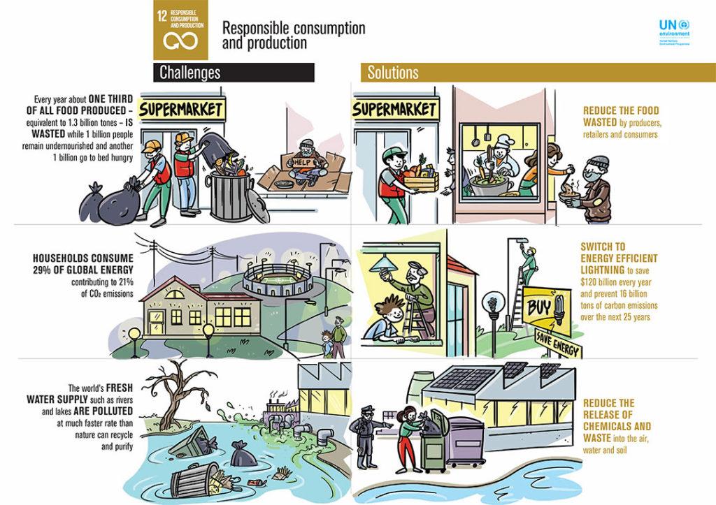 UN SDG12 Infographic
