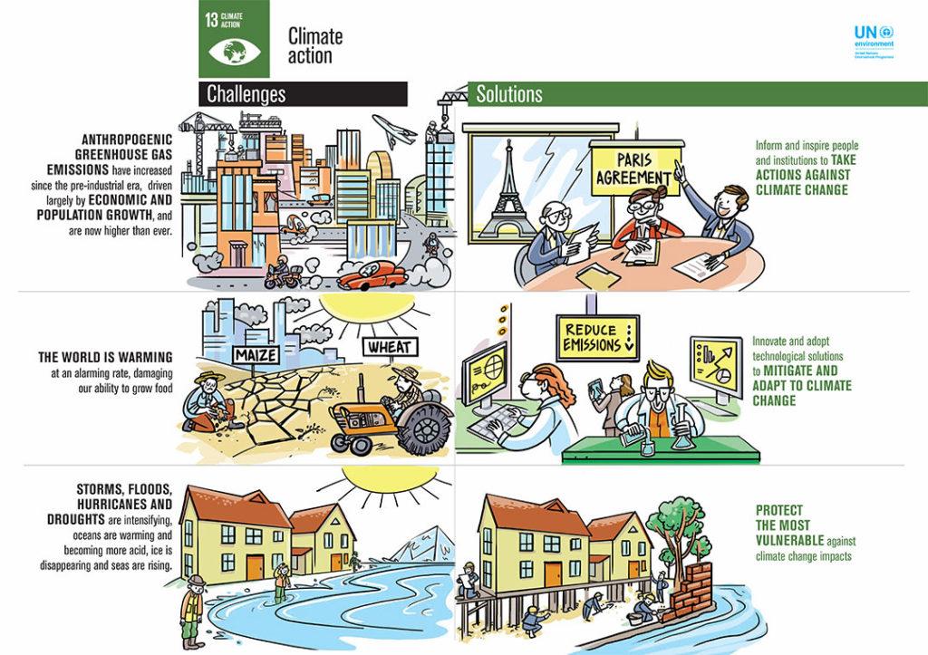 UN SDG13 Infographic