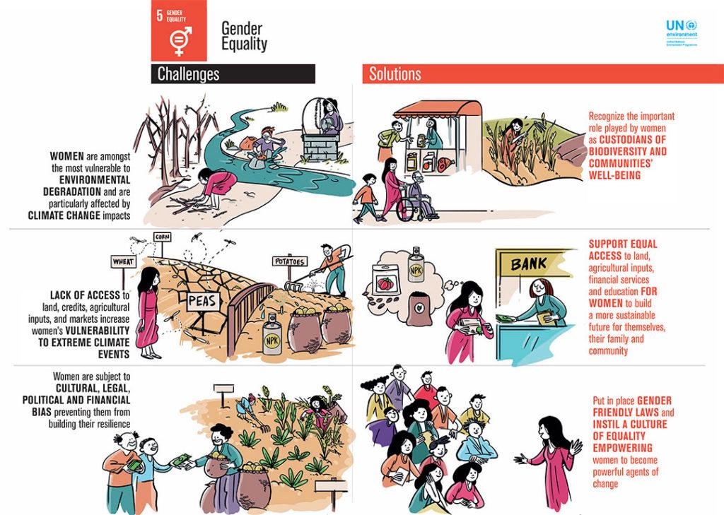 UN SDG5 Infographic